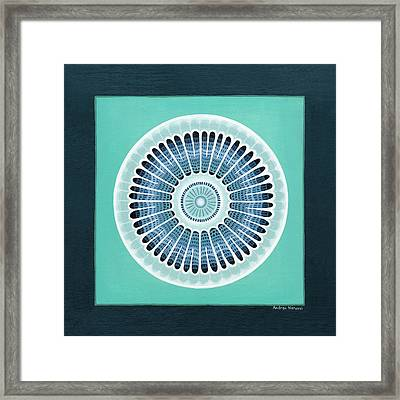 Diatom Mandala, Arachnoidiscus Framed Print by Andrea Nerozzi