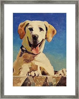Did Someone Say Treat? Framed Print