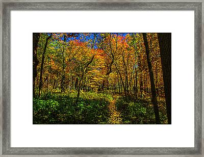 Did You Bring The Breadcrumbs? Framed Print