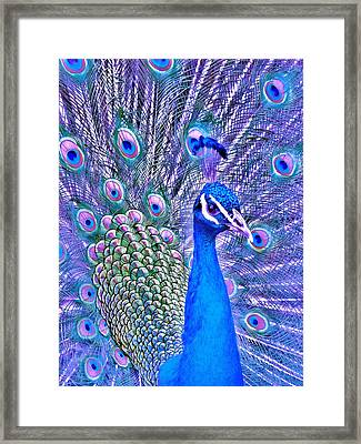 Did You Put Artificial Colors In My Food Framed Print