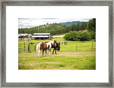 Did You Say Something? Framed Print