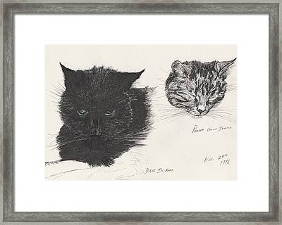 Diddybigface And Colliebeastie Framed Print by Vincent Alexander Booth