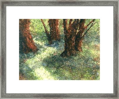 Difference Framed Print by Cynthia Ann Swan