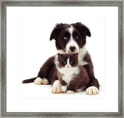 Different Strokes - Same Love Framed Print