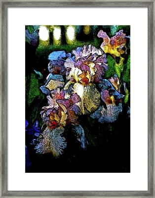 Digital Expressionist Painting Pale Pink Irises 6702 W_4 Framed Print
