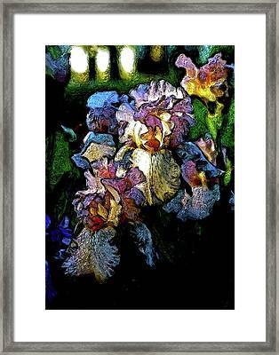 Digital Expressionist Painting Pale Pink Irises 6702 W_4 Framed Print
