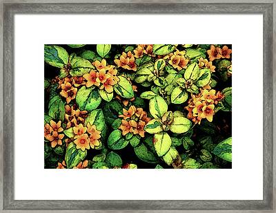 Digital Painting Quilted Garden Flowers 2563 Dp_2 Framed Print