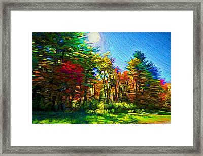 Sunny Afternoon Framed Print by Lilia D
