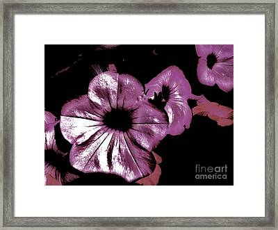 Digital Petunia Framed Print by Marsha Heiken