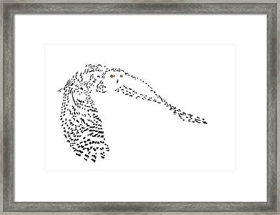 Digital Scribble - Snowy Owl II Framed Print by Nathan Shegrud