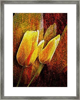 Digital Tulips Framed Print by Svetlana Sewell