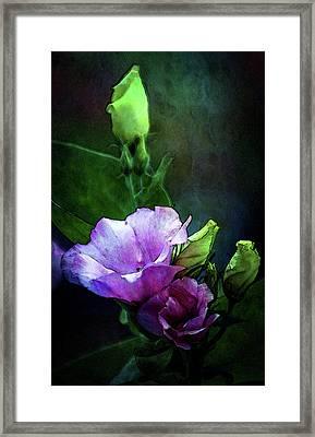 Digital Watercolor Elegance 3700 W_2 Framed Print