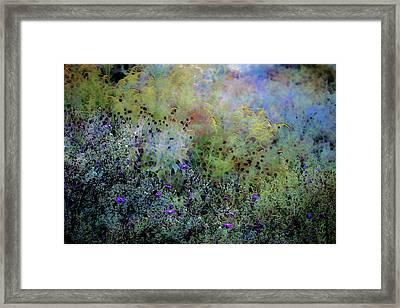 Digital Watercolor Field Of Wildflowers 4064 W_2 Framed Print