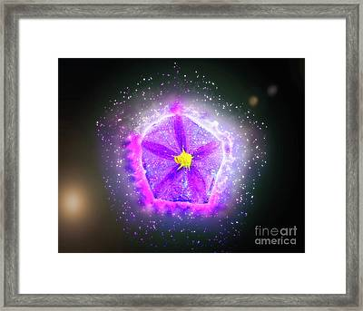Digitally Manipulated Purple Garden Flower  Framed Print