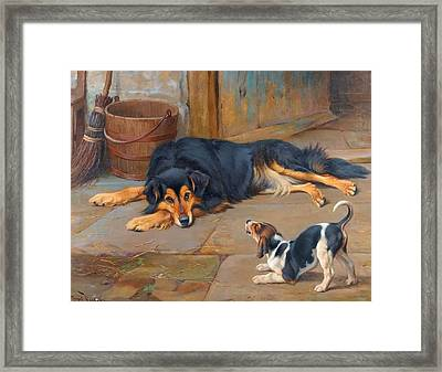 Dignity And Impudence Framed Print by MotionAge Designs