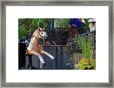 Dime Pony Framed Print