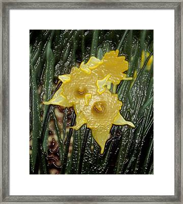 Dimensional Daffodils Framed Print by Wide Awake Arts
