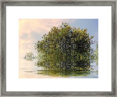 Dimensional Framed Print