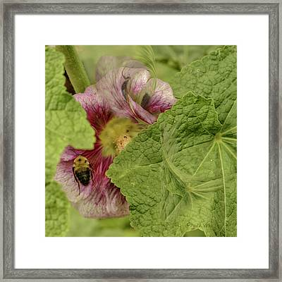 Dimensions Of Bees_flowers Framed Print