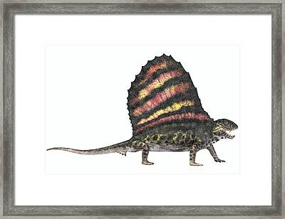 Dimetrodon Reptile From The Permian Framed Print
