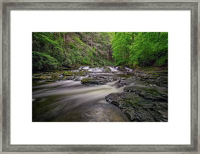 Dingmans Creek IIi Framed Print
