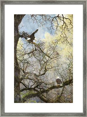 Dining In The Canopy Framed Print
