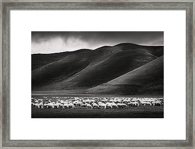 Dining Land Framed Print by Pietro Bevilacqua