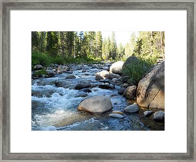 Dinkey Creek 10 Framed Print