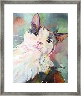 Framed Print featuring the painting Dinky by Christy Freeman