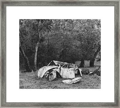 Dinosaur Graveyard Framed Print