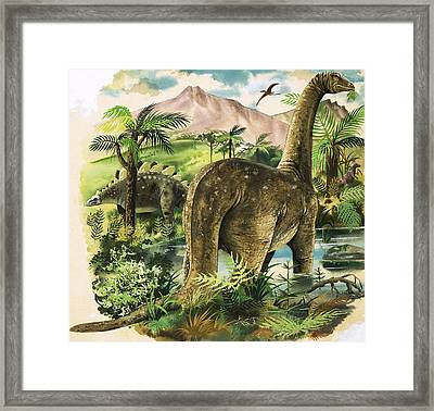 Dinosaurs Framed Print by English School