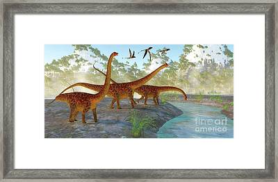 Diplodocus Dinosaur Morning Framed Print by Corey Ford