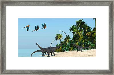 Diplodocus Drinking Framed Print by Corey Ford