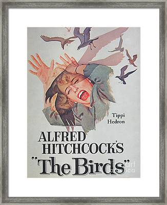 Director Alfred Hitchcock Rare Unique Collectible Famous Vintage Birds Poster Framed Print by Pd