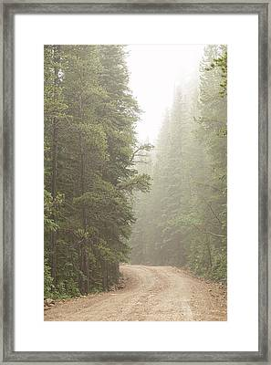 Framed Print featuring the photograph Dirt Road Challenge Into The Mist by James BO Insogna