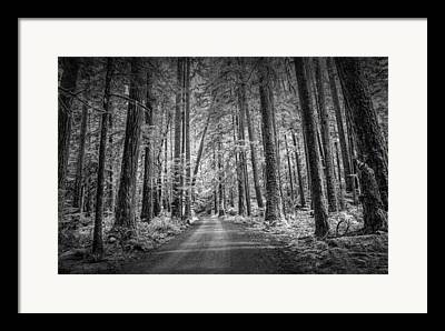 Randy Moss Photographs Framed Prints
