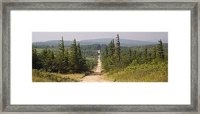 Dirt Road To Dolly Sods Framed Print