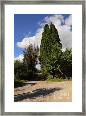 Dirt Roads And Pathways In Tuscany Italy Framed Print by DejaVu Designs