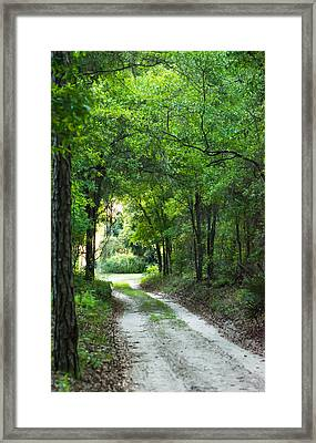 Dirt Trail Framed Print by Shelby  Young