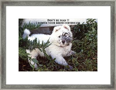 Dirty Dog Birthday Card Framed Print