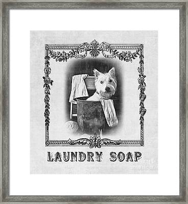 Dirty Dog Laundry Soap Framed Print by Edward Fielding