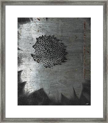 Dirty Silver Sunflower Framed Print