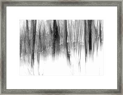 Framed Print featuring the photograph Disappearance by Steven Huszar