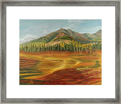Disappearing Lake Framed Print by Amy Reisland-Speer