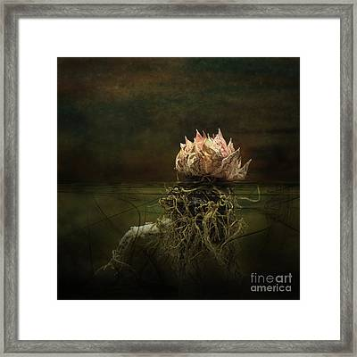 Disconnected Framed Print by Jan Piller