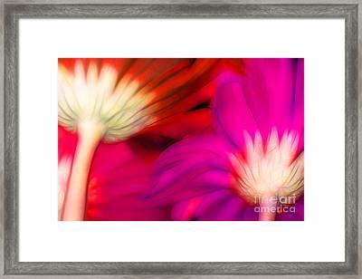 Discover Love Framed Print by Krissy Katsimbras