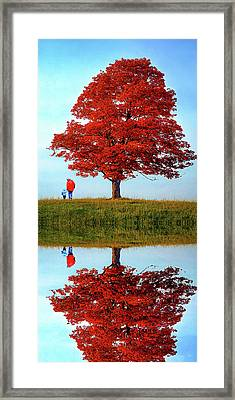 Discovering Autumn - Reflection Framed Print by Steve Harrington