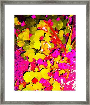 Discovering Joy Framed Print
