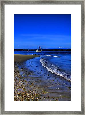 Discovery Park North Beach Framed Print by David Patterson
