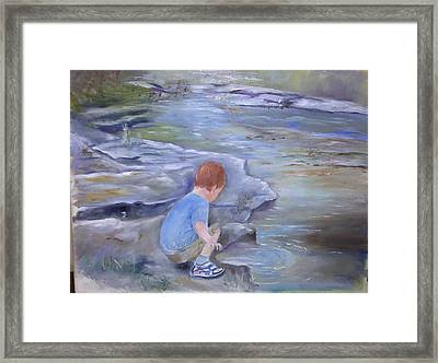 Discovery Framed Print by Vickie Shelton
